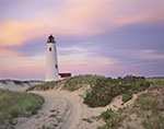 Sunset at Great Point Light with Roses in Bloom, Nantucket National Wildlife Refuge