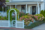 Hydrangeas along White Fence with Arbor in Front of West End Home, Cape Cod, Provincetown, MA