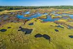 Tidal Creeks and Salt Marshes near Pamet River, Cape Cod, Truro, MA