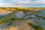 Early Morning Light Shines on Dunes in Provincelands at Cape Cod National Seashore, Cape Cod, Provincetown, MA