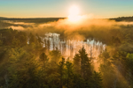 Early Morning Light Shines through Fog over Beaver Brook at Sunrise, Royalston, MA