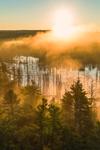Early Morning Light Shines through Fog over Beaver Brook at Sunrise, Royalston, MA