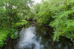 Pawcatuck River at Carter Preserve Trail System, Charlestown, RI