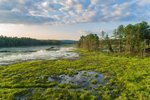 Royalston Eagle Reserve in Early Evening Light, Royalston, MA