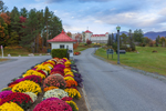 Colorful Flowers at Entrance to Mount Washington Hotel and Resort, White Mountains Region, Bretton Woods, Carroll, NH