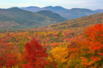 View of Brilliant Fall Foliage from Overlook on Bear Notch Road, Presidential Range in Distance, White Mountain National Forest, Bartlett, NH