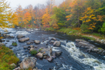 Early Morning Fog Hovers over West Branch Ausable River in Autumn, Adirondack Park, North Elba, NY
