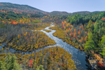South Creek and Wetlands, Inlet to Middle Saranac Lake in Autumn, Adirondack Park, Harrietstown, NY