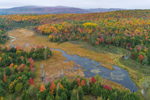 Wetlands and Tributary of Hudson River in Autumn, Adirondack Park, Hamlet of North Creek, Johnsburg, NY