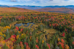 Wetlands in Fall with Franconia Range in Distance, White Mountain National Forest, View from Woodstock, NH