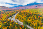 Brilliant Fall Foliage along Peabody River with Mount Washington and Presidential Range in Distance, White Mountain National Forest, Gorham, NH