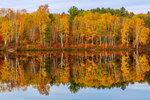 Brilliant Fall Foliage Reflecting in Calm Waters of Spectacle Pond, Brighton State Park, Brighton, VT