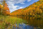 Colorful Foliage on Robbins Mountain and Gillett Pond, Green Mountains, Huntington, VT