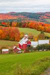 Bogie Mountain Dairy Farm in Autumn, Northeast Kingdom, West Barnet, Barnet, VT