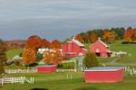 Red Barns and Horse Paddocks in Fall, Northeast Kingdom, Peacham, VT