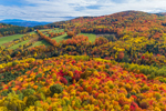 Colorful Fall Foliage and Green Fields on Roy Mountain, Northeast Kingdom, View from West Barnet, Barnet, VT