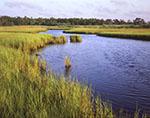 Salt Marsh and Northwest Creek, Northwest Harbor County Park, Northwest Harbor, Long Island