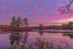 Predawn Light over Harvard Pond in Fall, Petersham, MA