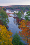 Early Morning at Harvard Pond in Fall, Petersham, MA