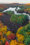 Paradise Pond and Leominster State Forest in Fall, Princeton, MA