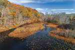 Nelsons Pond Area on Eightmile River, Lyme, CT