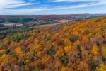 Colorful Foliage on Hillside above Ware River, Ware, MA