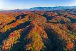 Early Evening Light Shines on Colorful Fall Foliage in Foothills to Great Smoky Mountains (in Distance,) View from Shields Mountain, Pigeon Forge, TN