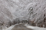 Country Road after Snowstorm, Marlboro, VT