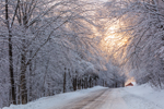Country Road Heading into the Rising Sun after Snowstorm, Green Mountains Region, Wilmington, VT