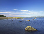 View of Great Salt Pond