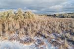 Kemp Brook Wetlands in Winter, Fitzwilliam, NH