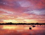 Spectacular Sunrise over Polpis Harbor