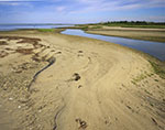 Sand Patterns and Tidal Creek, Pocomo Meadow