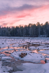 Winter Sunset over Wetlands in Whetstone Woods Wildlife Sanctuary, Wendell, MA