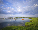 Morning Light over Boats in Calm Water of Polpis Harbor