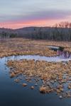 Sunset at Thousand Acre Swamp, Phillipston, MA