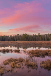 Sunrise at Royalston Eagle Reserve, Royalston, MA