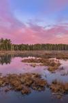 Sunrise at Royalston Eagle Reserve, Royalston, MA