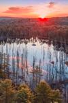 Beaver Brook at Sunrise, Royalston, MA