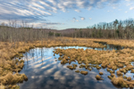 Early Morning Cloud Reflections at Thousand Acre Swamp, Phillipston, MA
