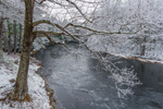 Millers River after Early Spring Snowfall, Bearsden Forest Conservation Area, Athol, MA