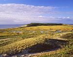 Golden Light over Salt Marsh and Shoreline of Great Island, Cape Cod National Seashore