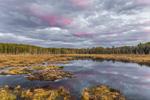 Colorful Sunset over Beaver Lodge at Royalston Eagle Reserve, Royalston, MA