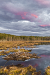 Colorful Sunset over Beaver Lodge at Royalston Eagle Reserve, Royalston, MA
