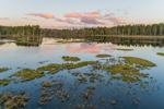 Cloud Reflections at Sunrise at Royalston Eagle Reserve, Royalston, MA
