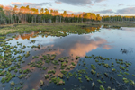 Cloud Reflections and First Light at Royalston Eagle Reserve, Royalston, MA
