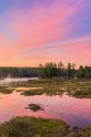 Colorful Skies over Harvard Pond at Predawn, Petersham, MA