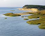 View of Salt Marshes and Cliff on Great Island, Cape Cod National Seashore