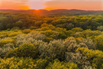 Sunset over Forests in Spring at Pond Mountain Natural Area, Litchfield Hills, Kent, CT