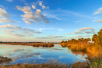 Pool and Marshes in Early Evening Light, St. Marks National Wildlife Refuge, Gulf Coast, Florida Panhandle, Gulf of Mexico, Wakulla County, FL